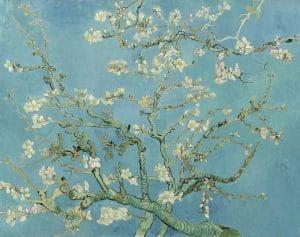 cuadros de van gogh ramas con flores de almendro